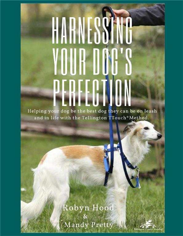 Robyn Hood/Mandy Pretty: Harnessing Your Dog's Perfection (NUR AUF ENGLISCH)