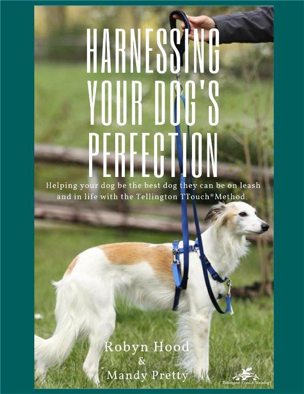 Robyn Hood/Mandy Pretty: Harnessing Your Dog's Perfection (NUR AUF ENGLISCH) VORÜBERGEHEND NICHT LIEFERBAR1